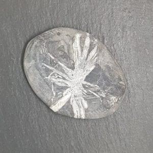 minerales-planos-crisantemo-1